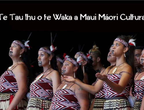 Te Matatini 2019 Regional Qualifying Kapa Haka Competition / Saturday 10th February 2018
